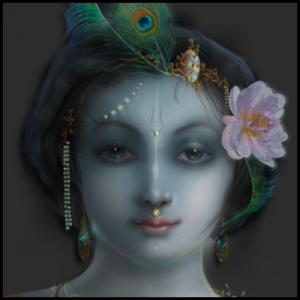 Krishna_Gallery